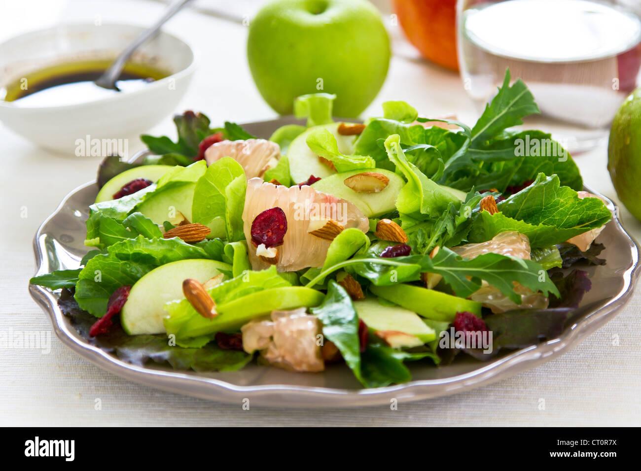 Apfel, Grapefruit-Cranberry-Salat Stockfoto