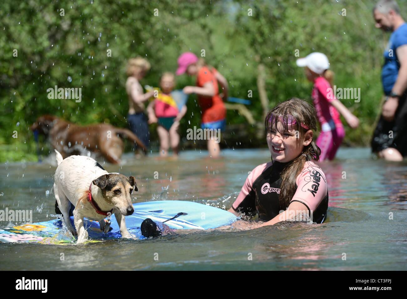 Ein Mädchen spielen mit ihrem Hund in den Fluss Avon im Figheldean Mühlenteich, Wiltshire UK Stockfoto