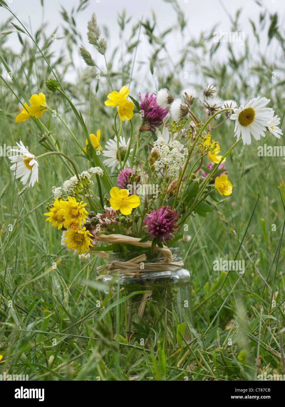 Wild Flowers In Jam Jar Stockfotos Wild Flowers In Jam Jar Bilder