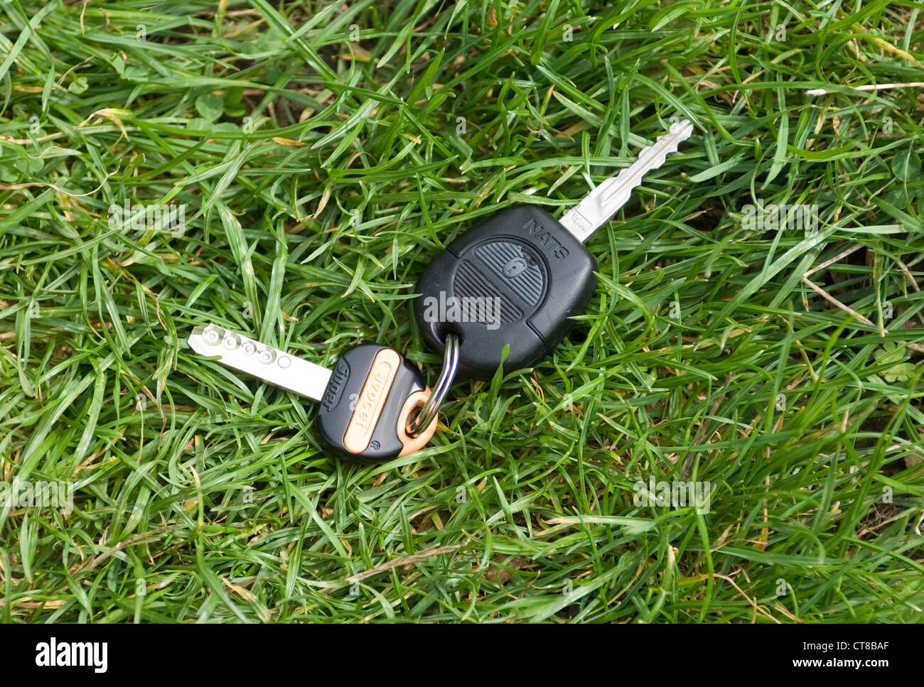 verlorene Autoschlüssel und Hausschlüssel an Schlüsselring in Rasen Stockbild