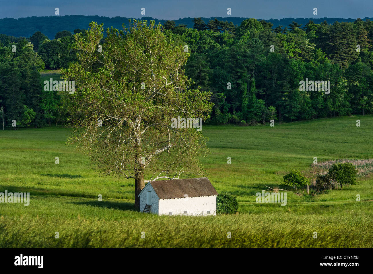 Ländliche Quellenhaus in üppigen pastorale Landschaft, Chester County, Pennsylvania, USA Stockbild