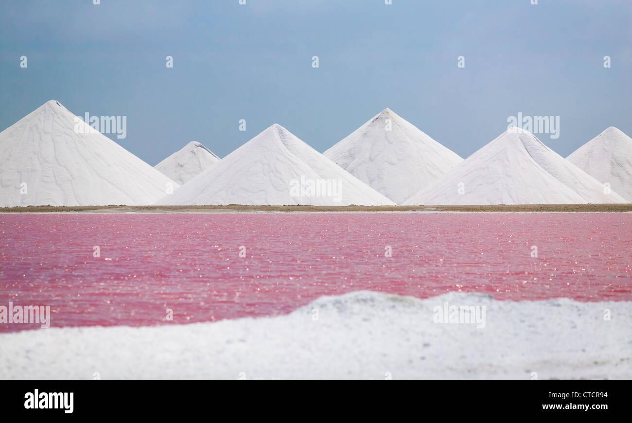 Salz Eindampfanlage in Bonaire Stockbild