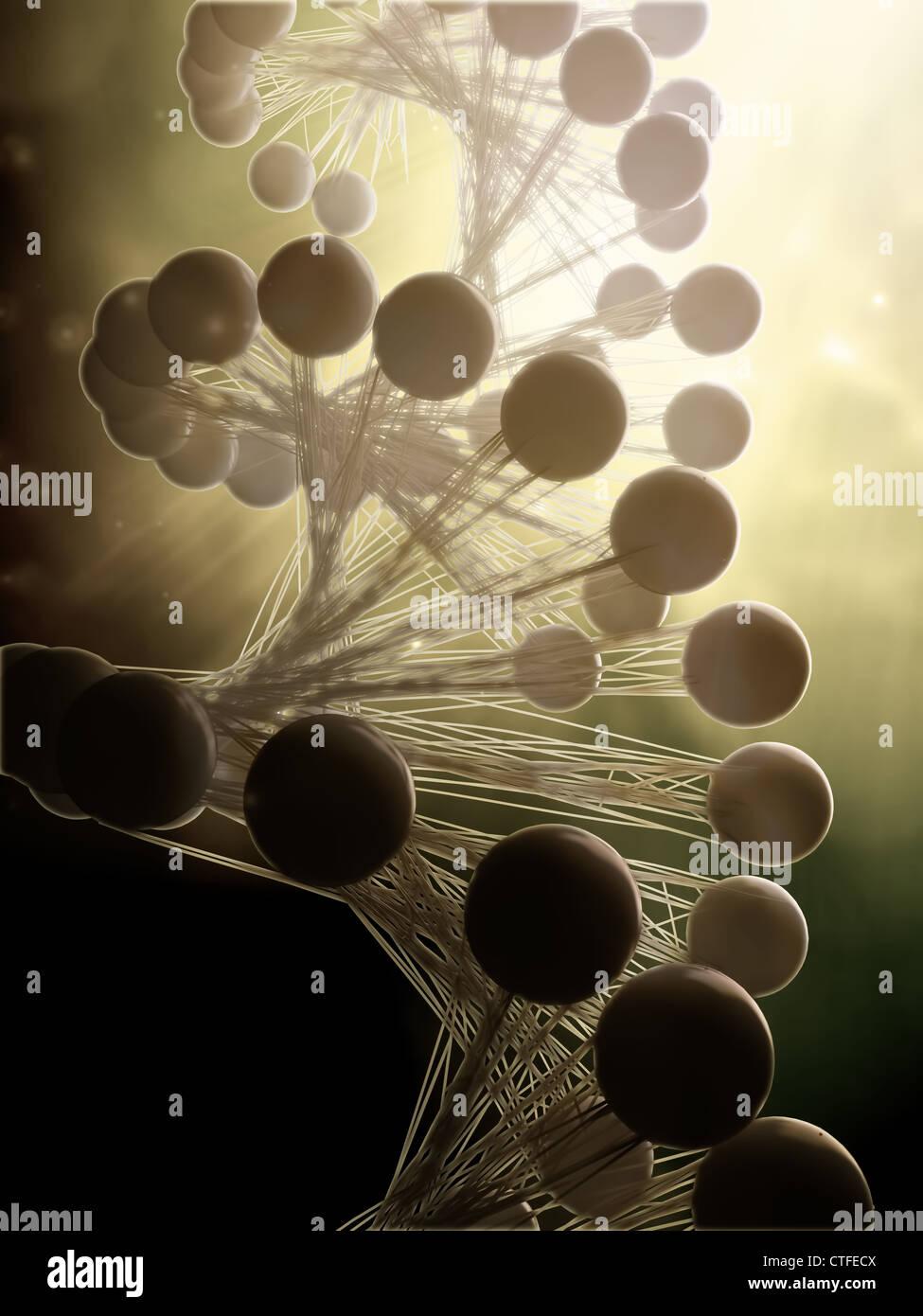 Stilisierten DNA-Doppelhelix Strang Modell Stockbild