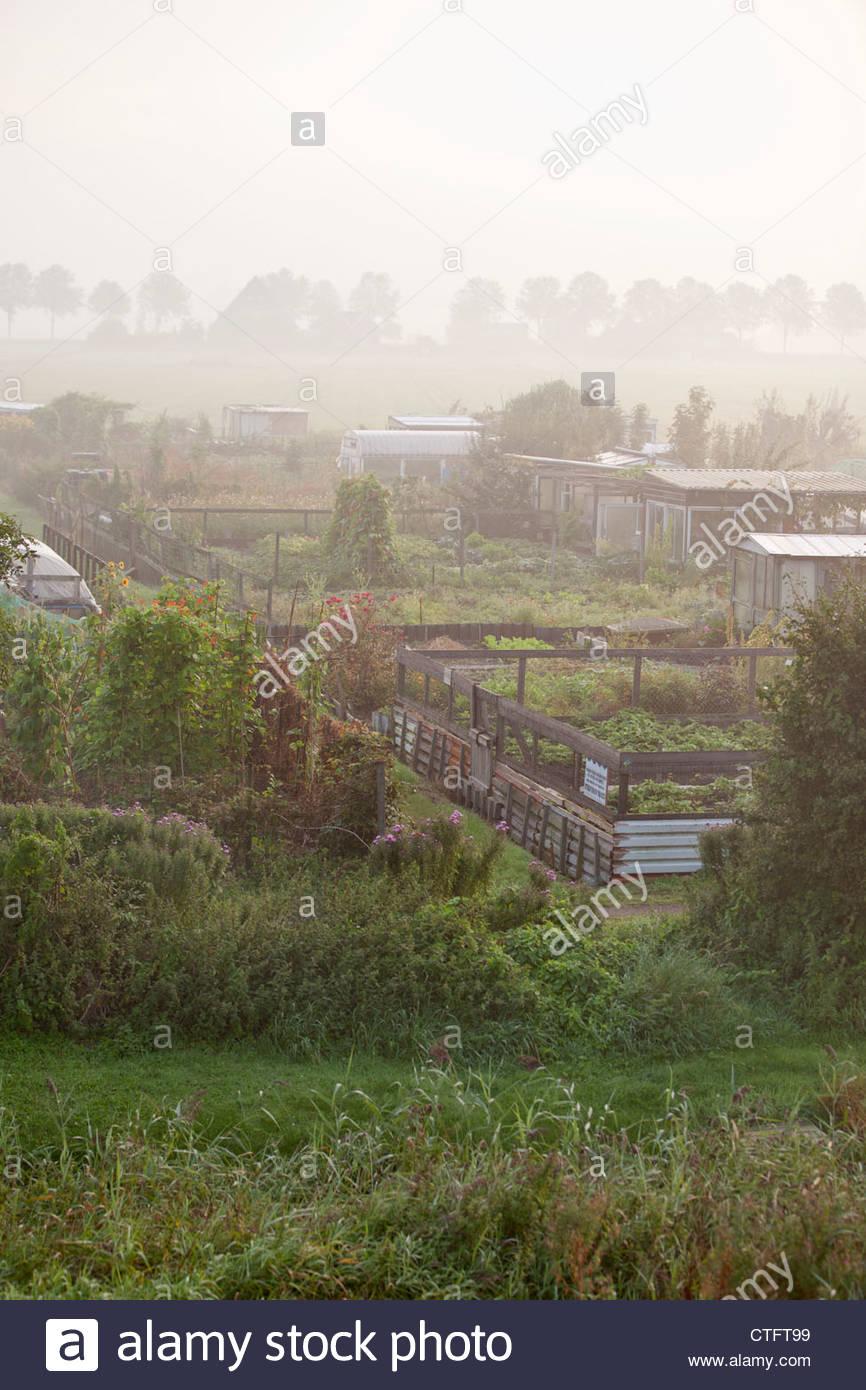 Die Niederlande Zuid Beemster Kleine Gärten In Der Stadt Von