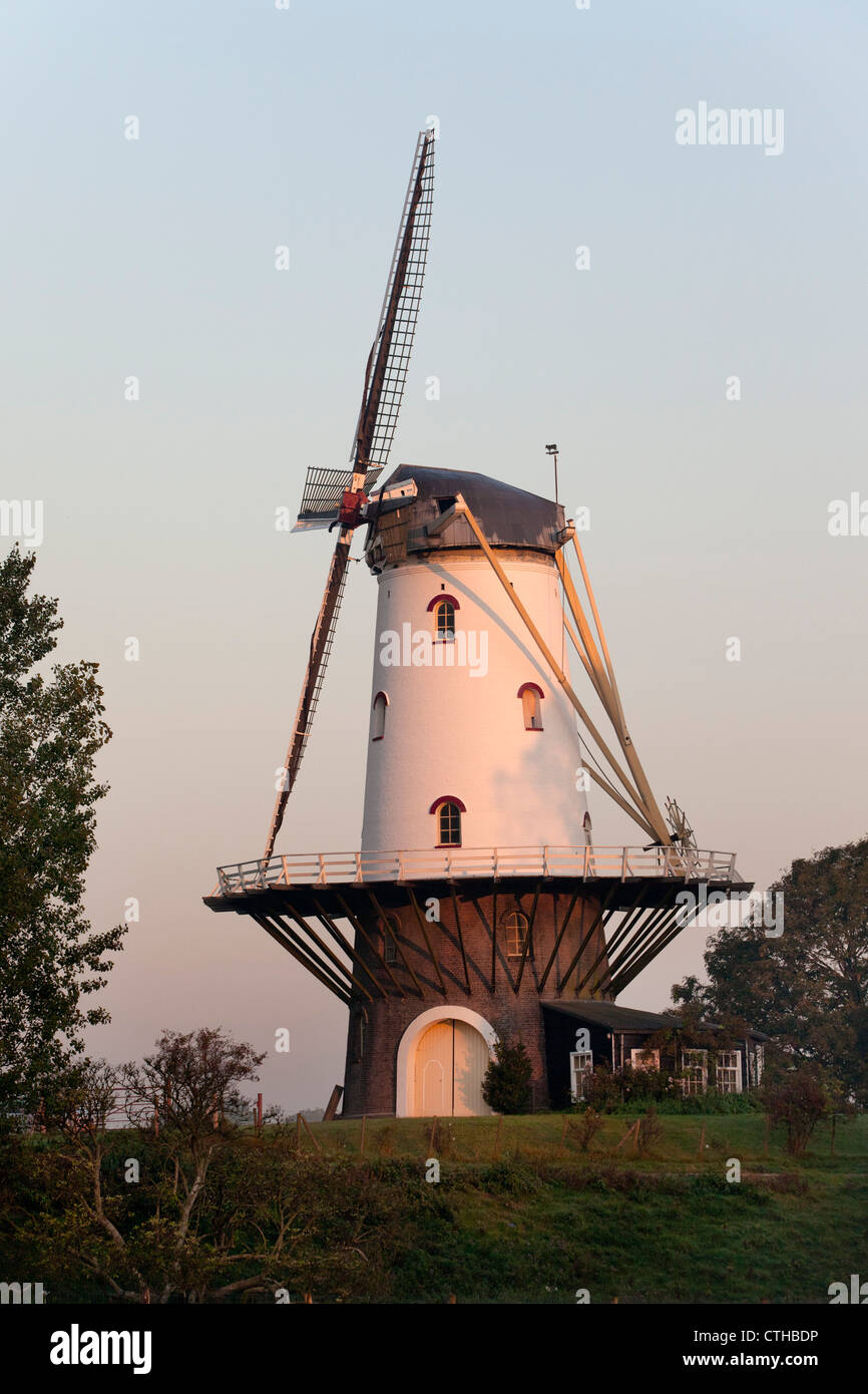 Die Niederlande, Veere, Windmühle. Stockbild