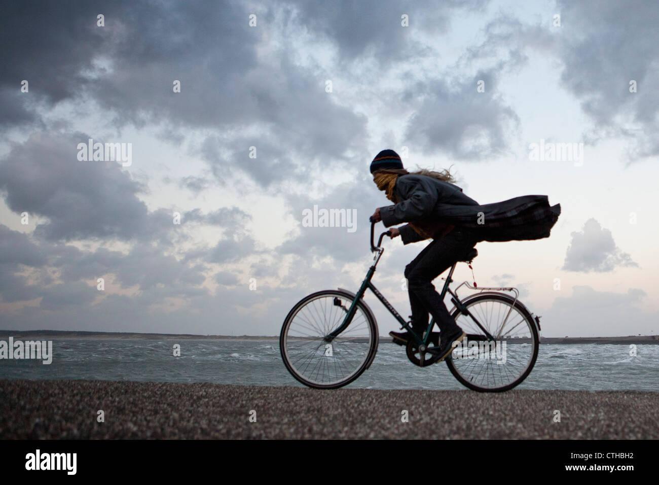 Die Niederlande, Kamperland, Frau Radfahren gegen den stürmischen Wind. Stockbild