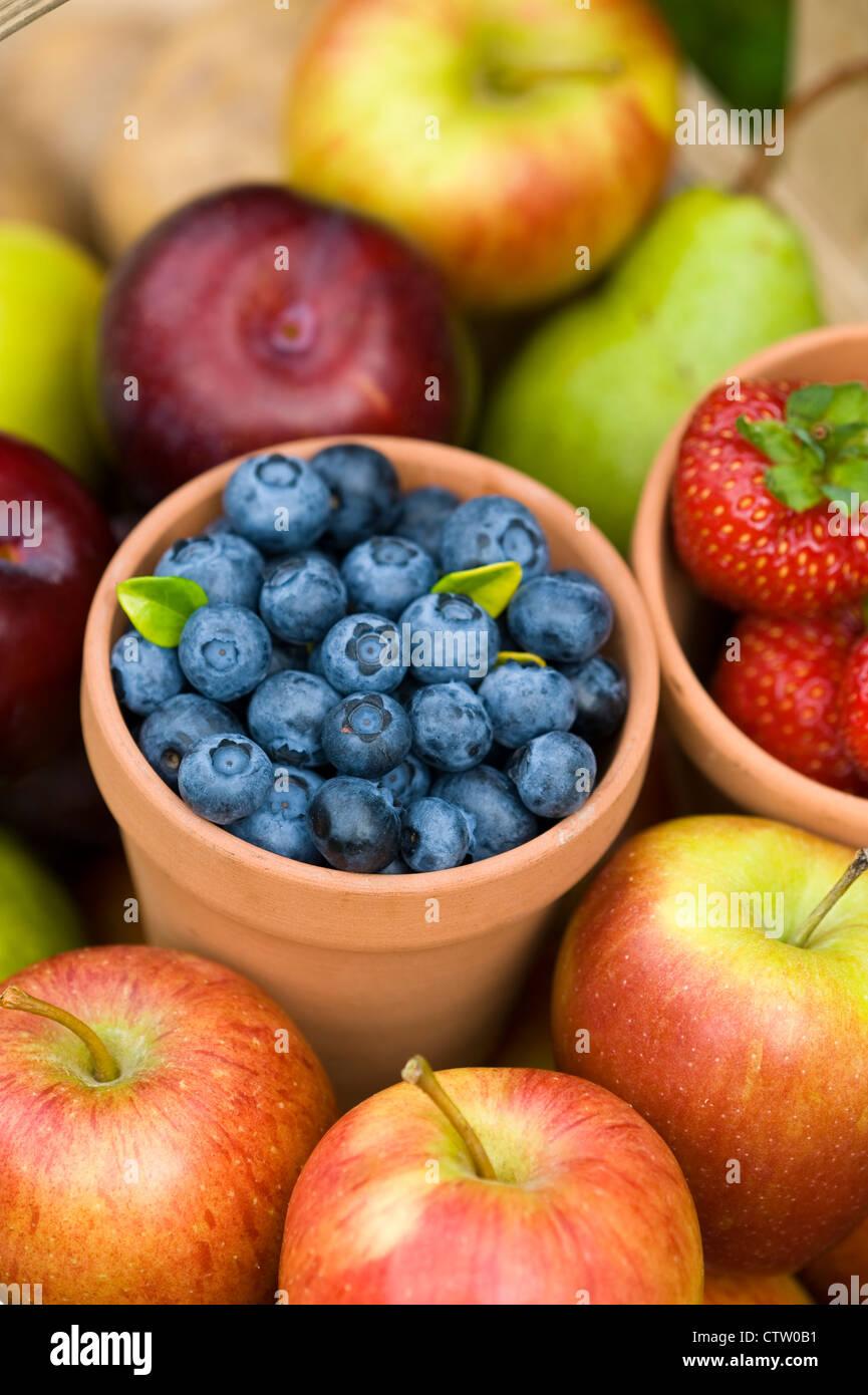 Beliebt Bevorzugt Sommer oder Herbst frisches Obst einschließlich geerntet @DK_63