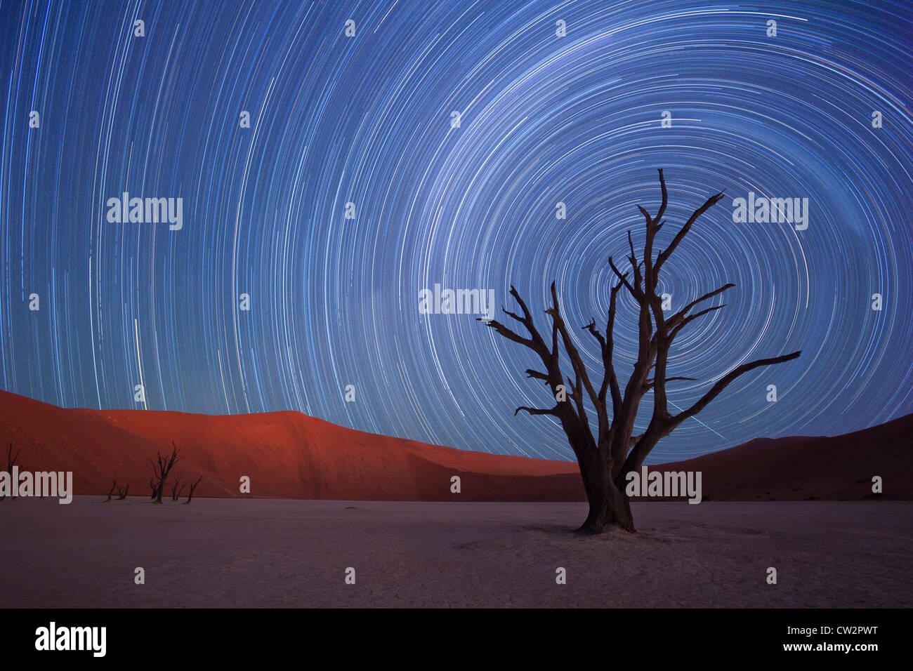 Sternspuren, Dead Vlei, Sossusvlei, Namibia Stockbild
