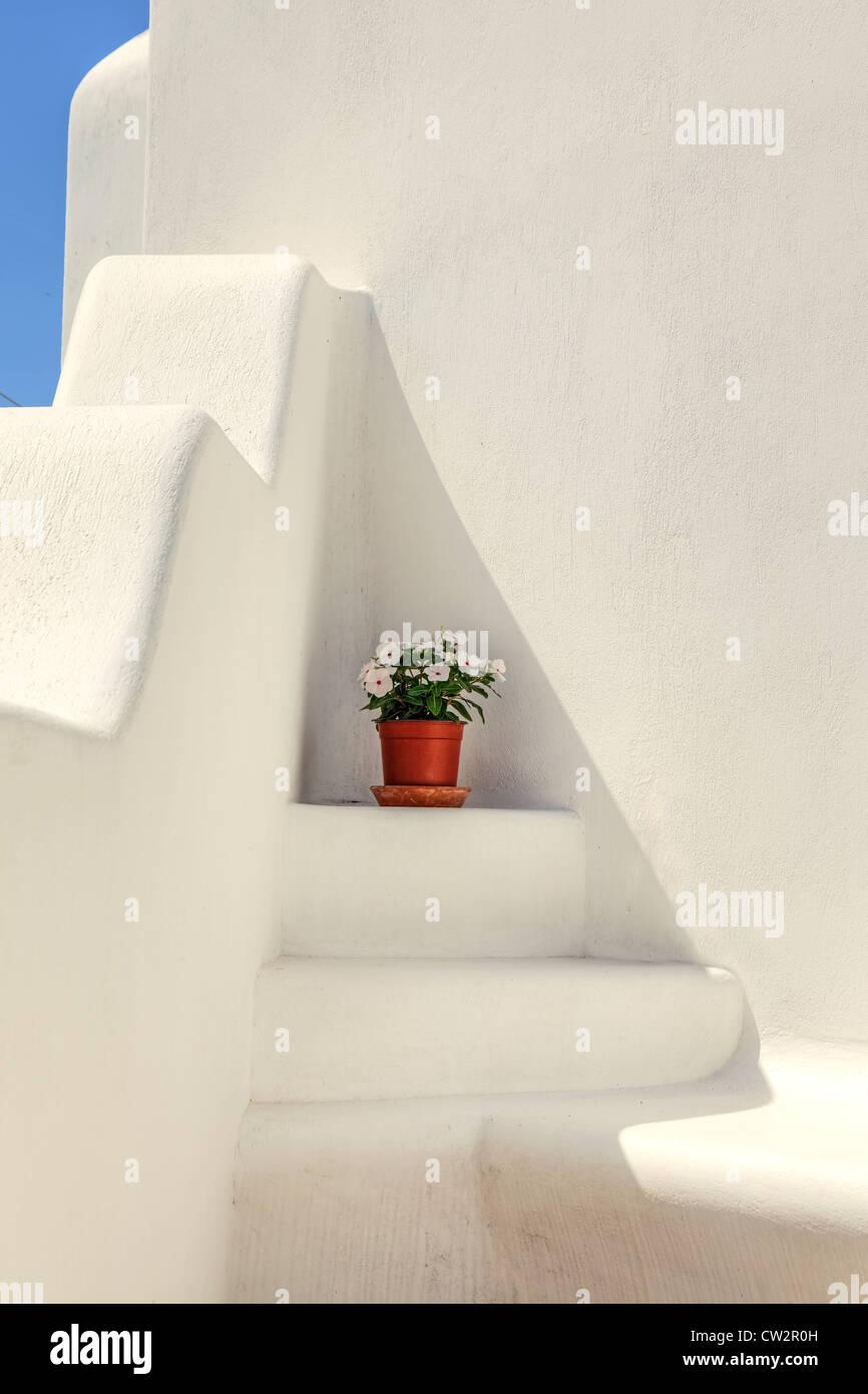 ein Blumentopf auf einer weißen, griechische Treppe Stockbild