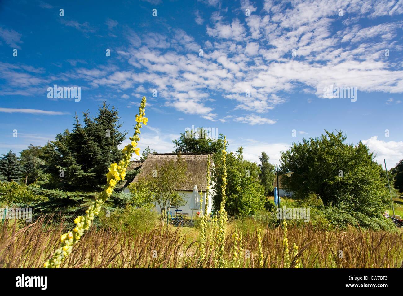 Kleines Haus In Mecklenburg Vorpommern Kaufen