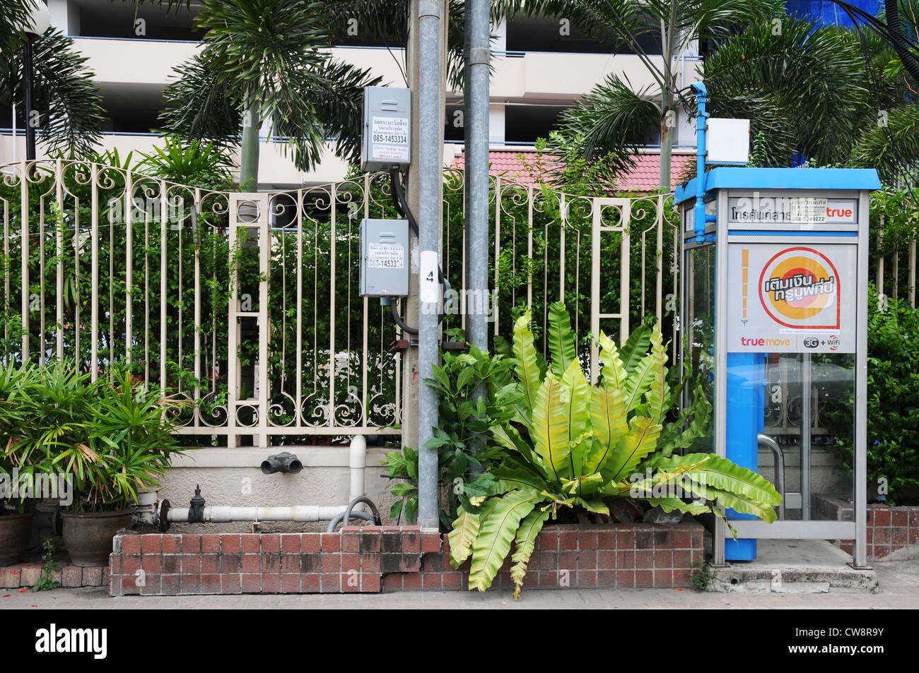 Telefonzelle Und Exotischen Pflanzen Am Straßenrand