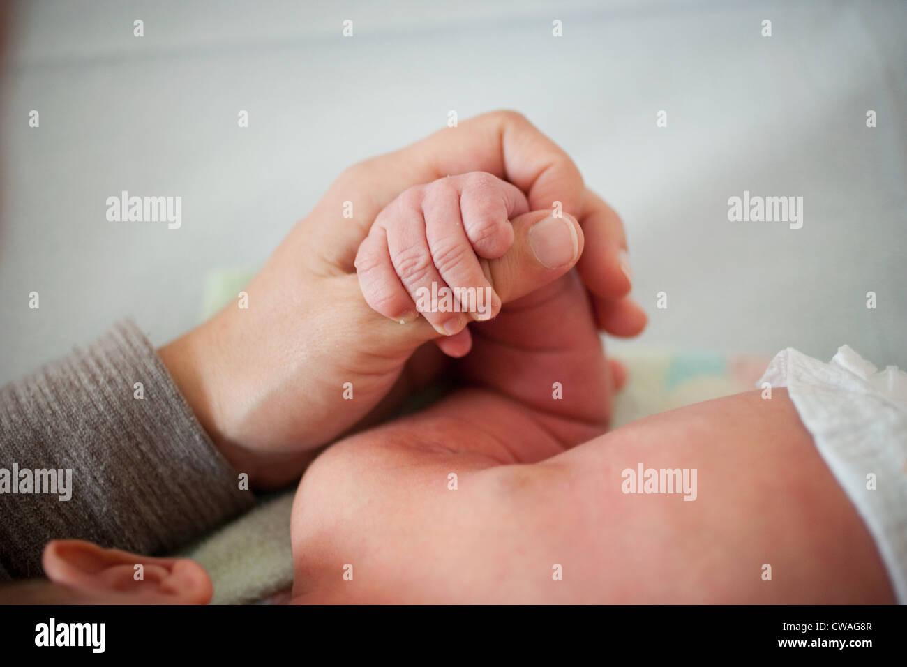 Mutter des neugeborenen Babys Hand hält Stockbild