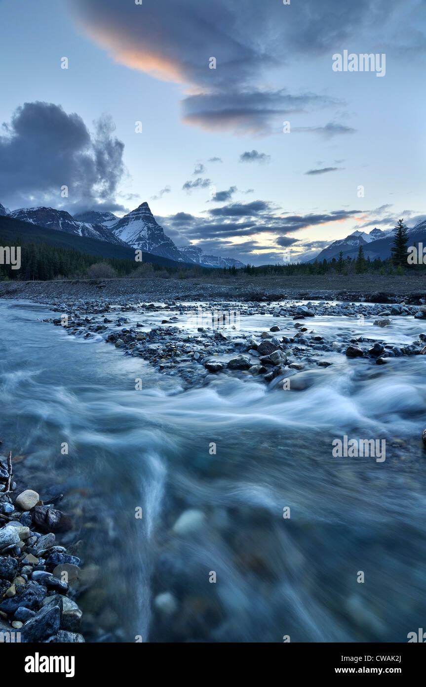 Silverhorn Creek, Banff Nationalpark, Alberta, Kanada Stockbild