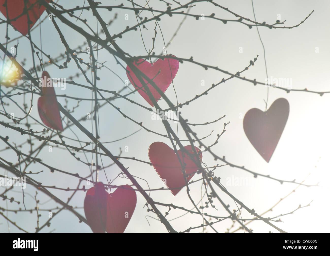 Zweig, Herzen, Kugeln Stockbild