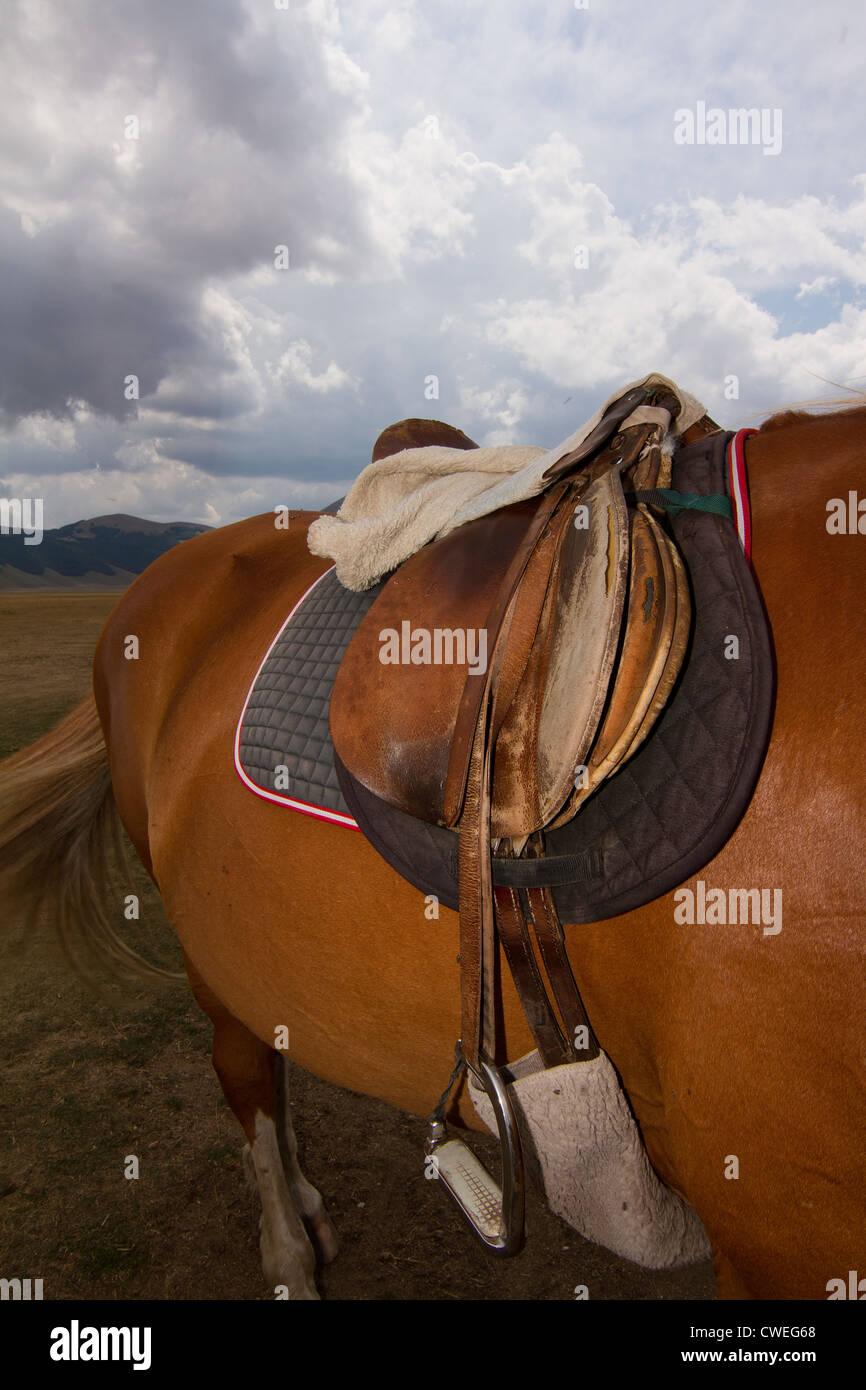 Sattel am Pferd im Reitstall in Castelluccio in Italien Stockbild