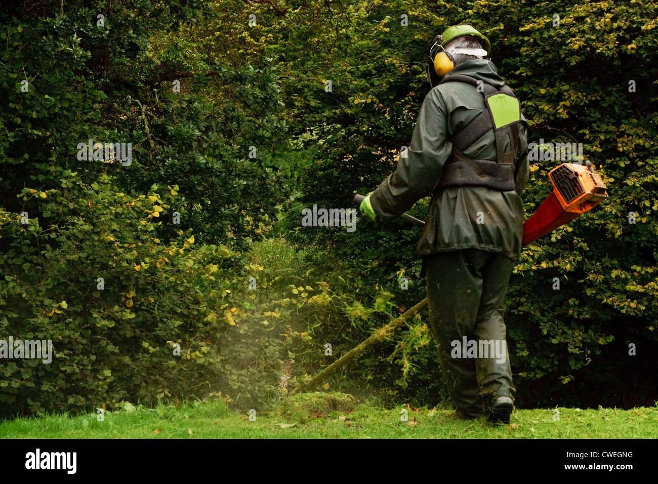 Ein Landarbeiter, trimmen die Bürste mit einem Benzin-Trimmgerät Stockbild