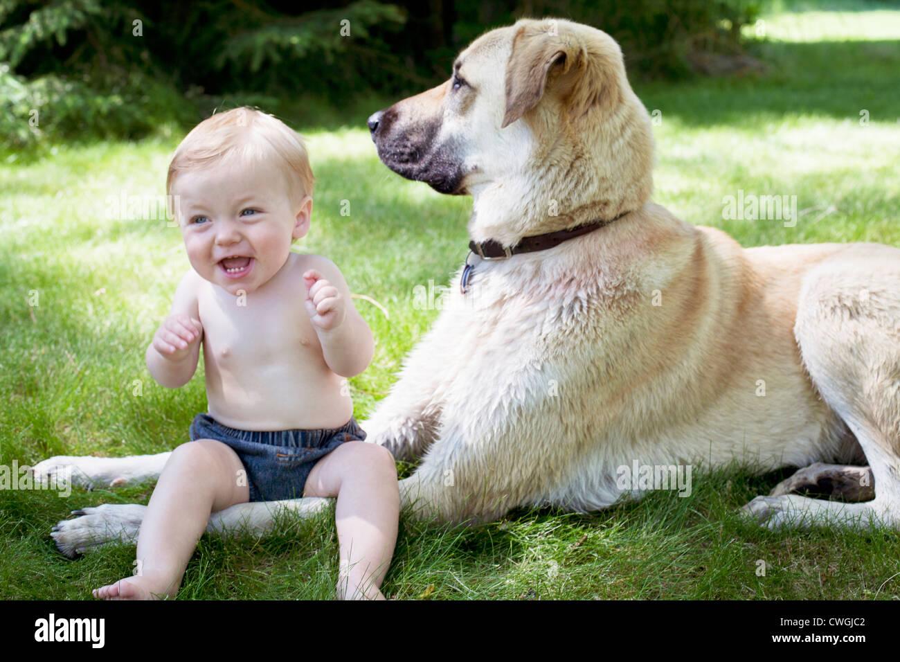 Baby Junge sitzt in der Nähe von seinem weißen Hund draußen im grünen Rasen. Stockbild