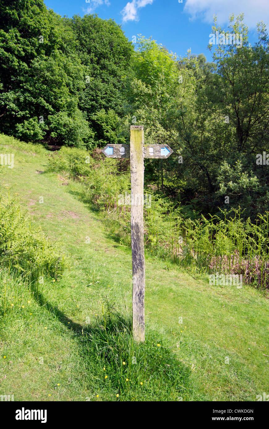 Finger-Post zeigen in beide Richtungen auf Offa es Dyke in Shropshire Stockbild