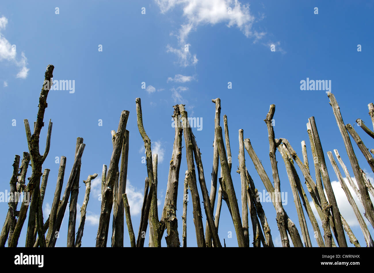 fence made of branches stockfotos fence made of branches bilder alamy. Black Bedroom Furniture Sets. Home Design Ideas