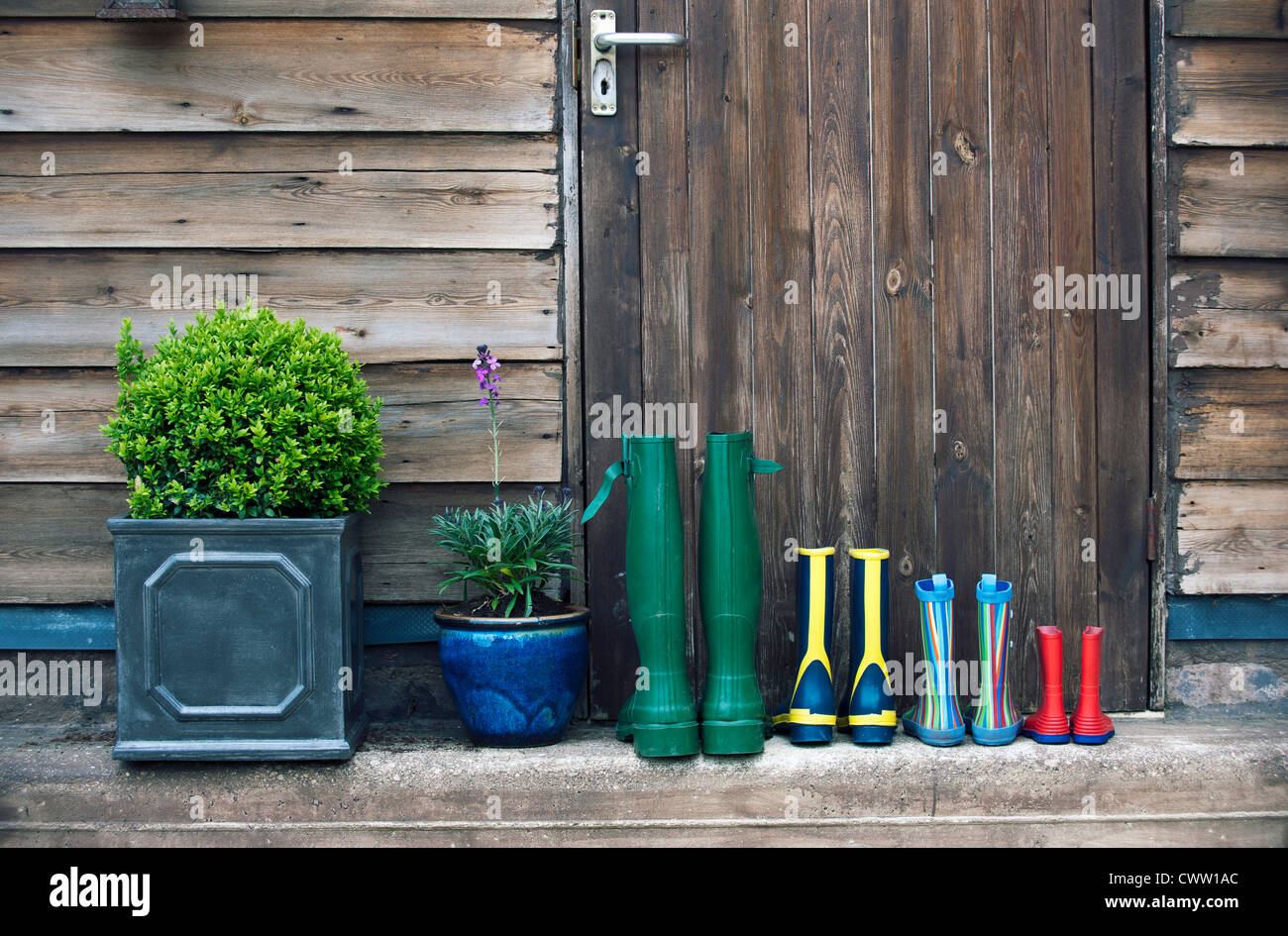 Gummistiefel und Pflanzen auf Veranda Stockfoto