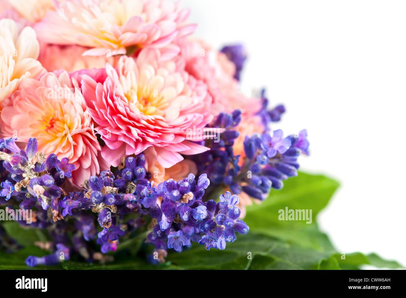 chrysanthemum bouquet stockfotos chrysanthemum bouquet bilder alamy. Black Bedroom Furniture Sets. Home Design Ideas