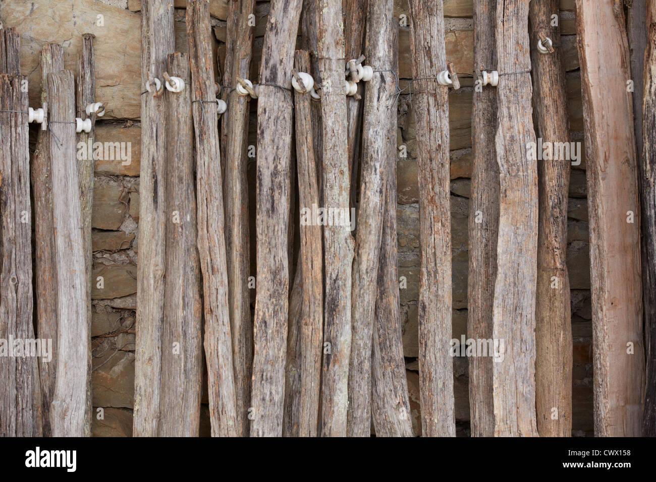 Grüner Rost alte hölzerne dauben verfallenen rost holzleisten backstein