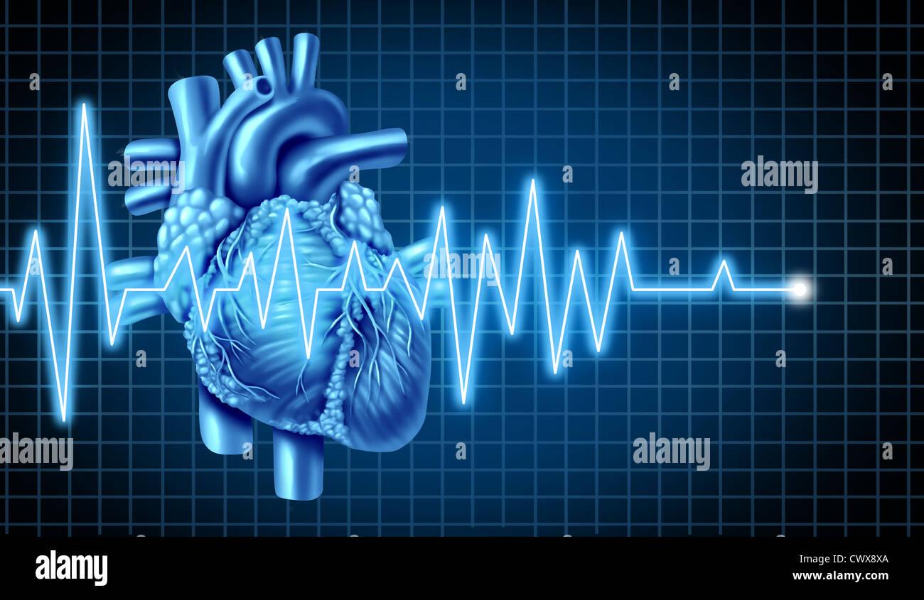 EKG-Grafik mit Elektrokardiogramm eines menschlichen Herzens ...
