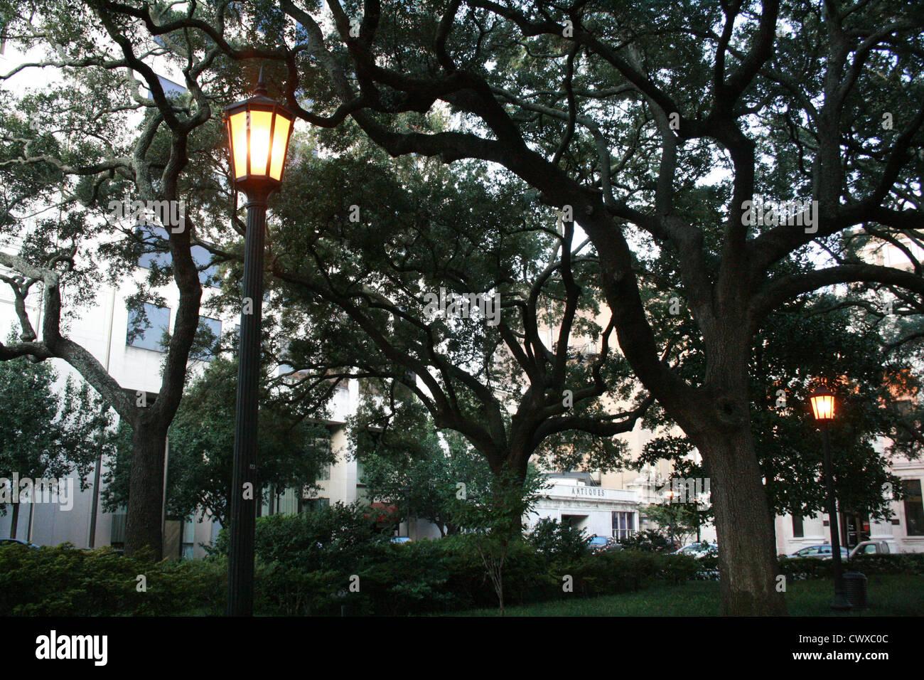 Straßenlaterne Abend Moos Eichen Savannah Georgia Ga fallen Herbst Blätter Nahaufnahme Baum Blätter Natur Stockfoto