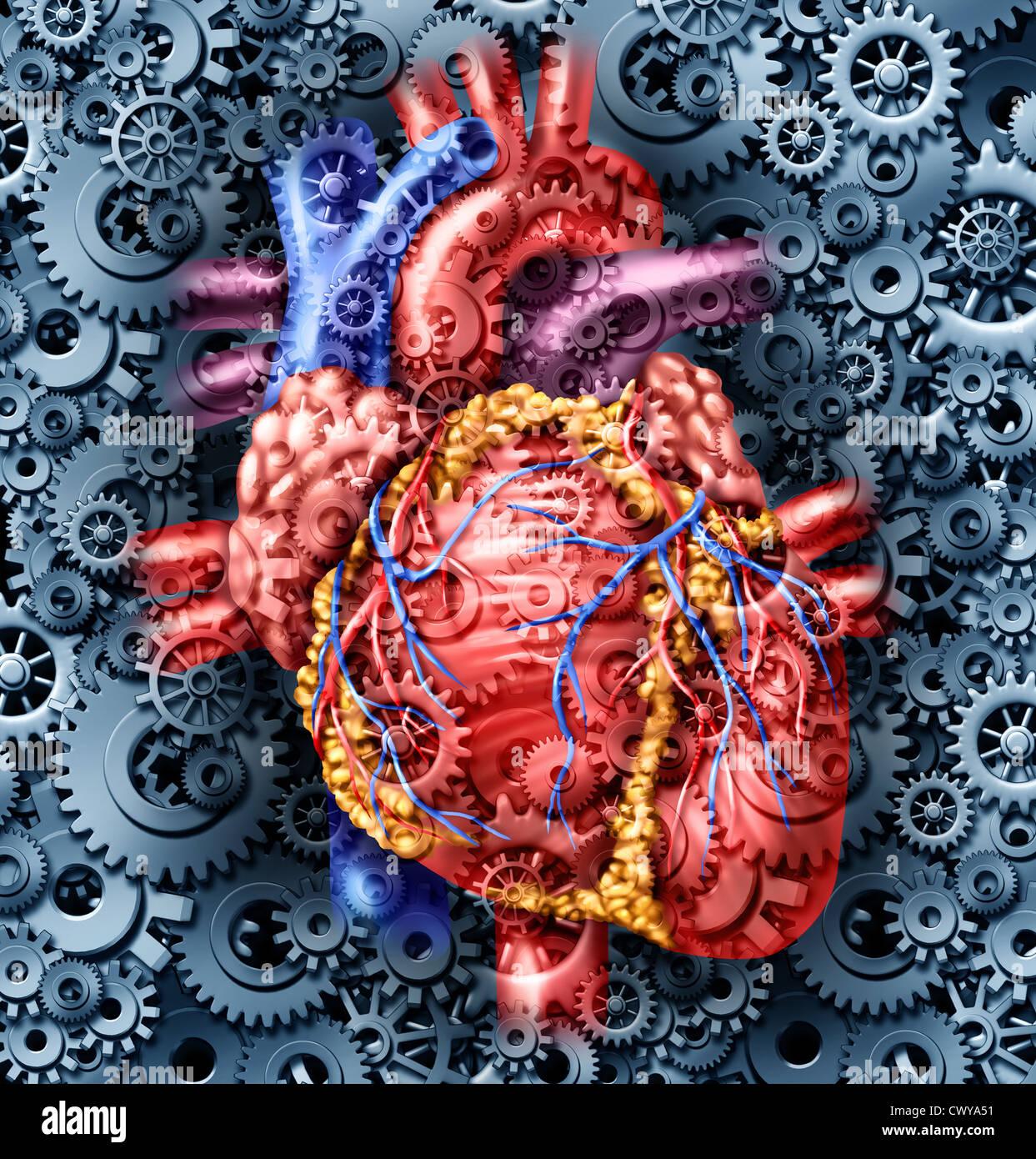 Menschliche Gesundheit medizinische Versorgung Herzsymbol mit ...