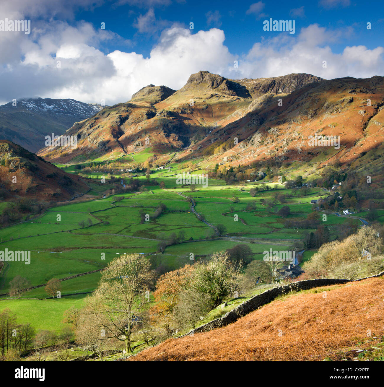 Great Langdale und Langdale Pikes, Nationalpark Lake District, Cumbria, England. Herbst (November) 2010. Stockbild