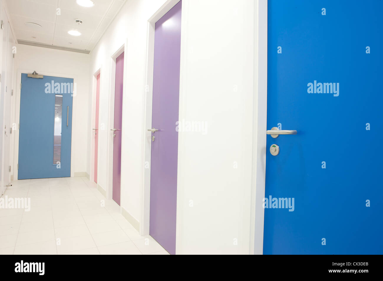 Moderne Büro-Innenarchitektur. Blau, rosa und lila Türen Stockfoto ...