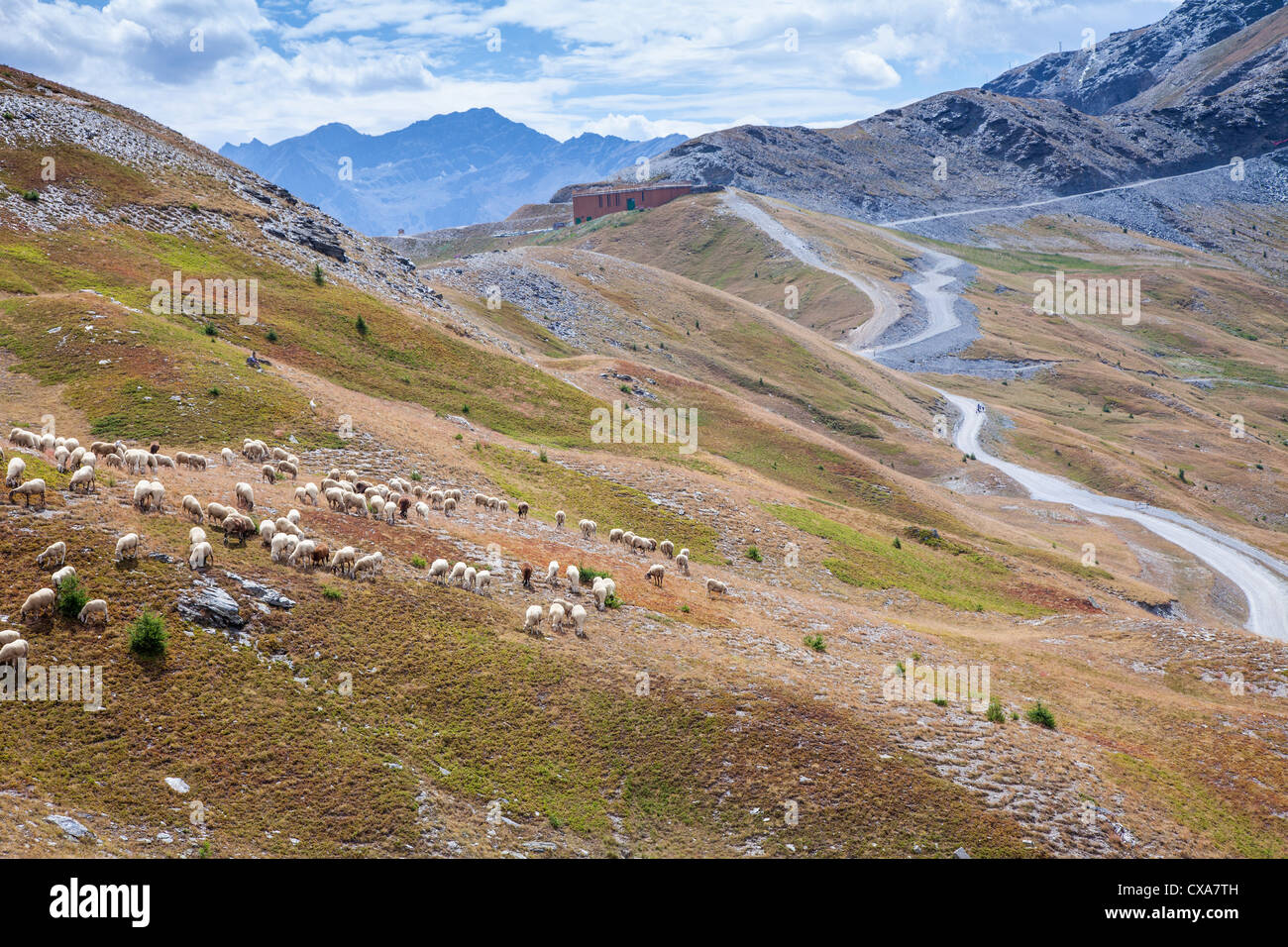 sestriere italy summer stockfotos sestriere italy summer bilder alamy. Black Bedroom Furniture Sets. Home Design Ideas