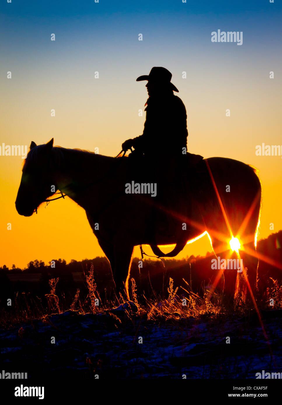 Cowboy auf Pferd bei Sonnenaufgang auf einer Ranch in Hulett, Wyoming Stockbild