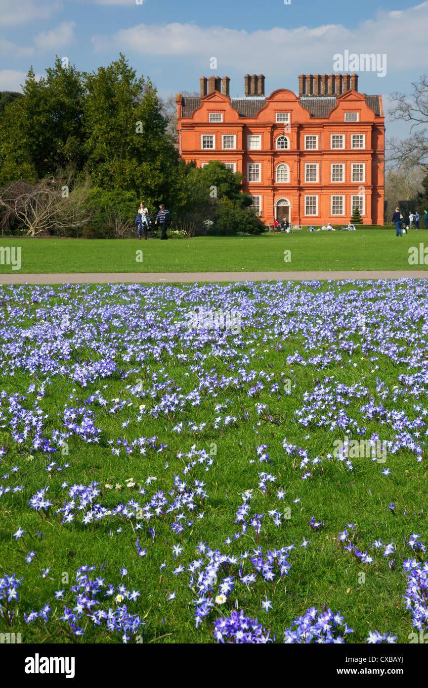 Der Schnee Blumenpracht in den Rasen in der Nähe von Kew Palace im Frühjahr, Royal Botanic Gardens, Kew, Stockbild