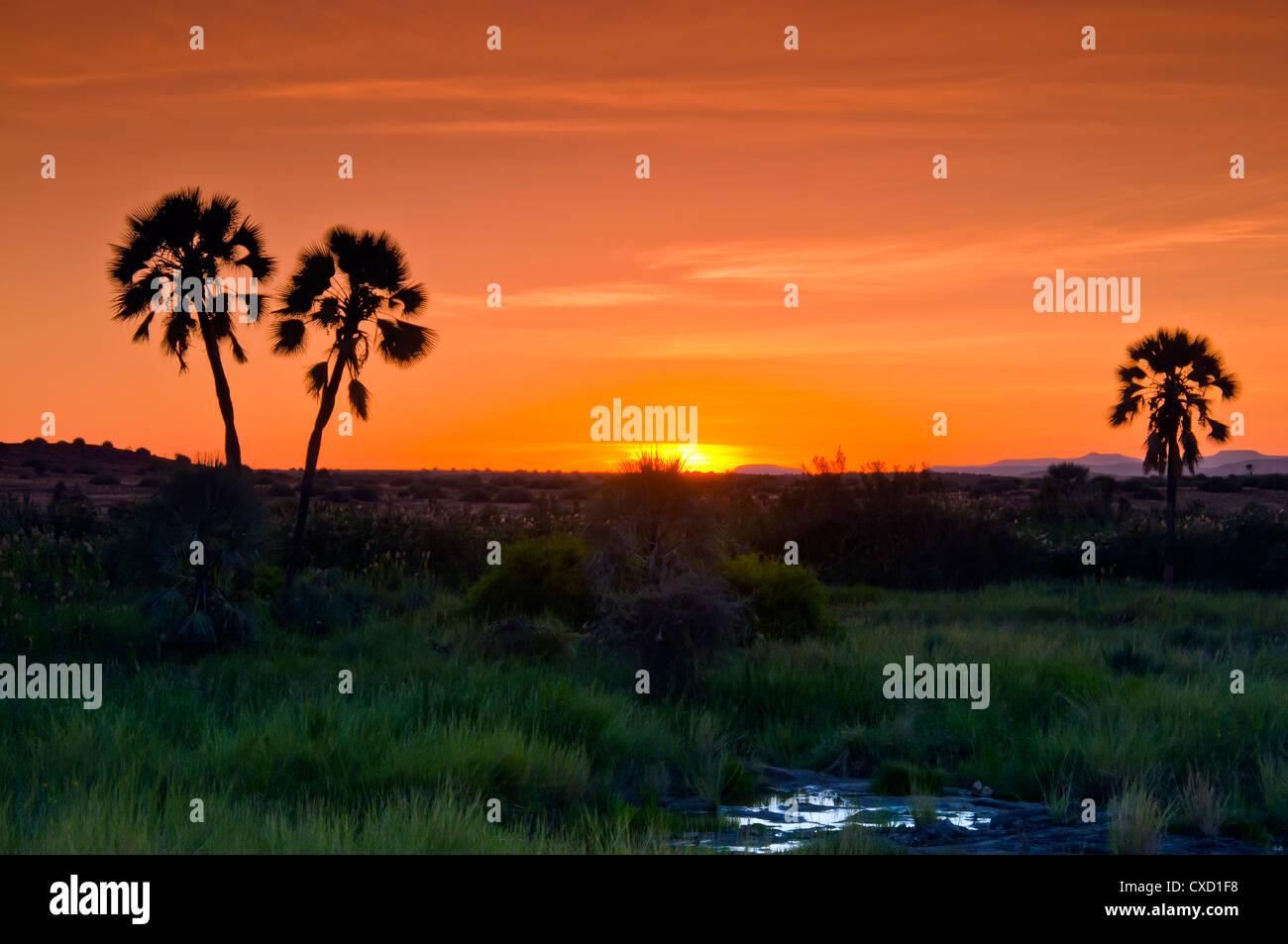 Damaraland, Kunene Region, Namibia, Afrika Stockfoto
