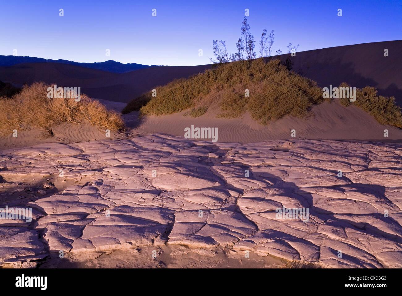 Getrocknete Schlamm im flachen Sanddünen Mesquite, Death Valley Nationalpark, Kalifornien, Vereinigte Staaten von Stockfoto
