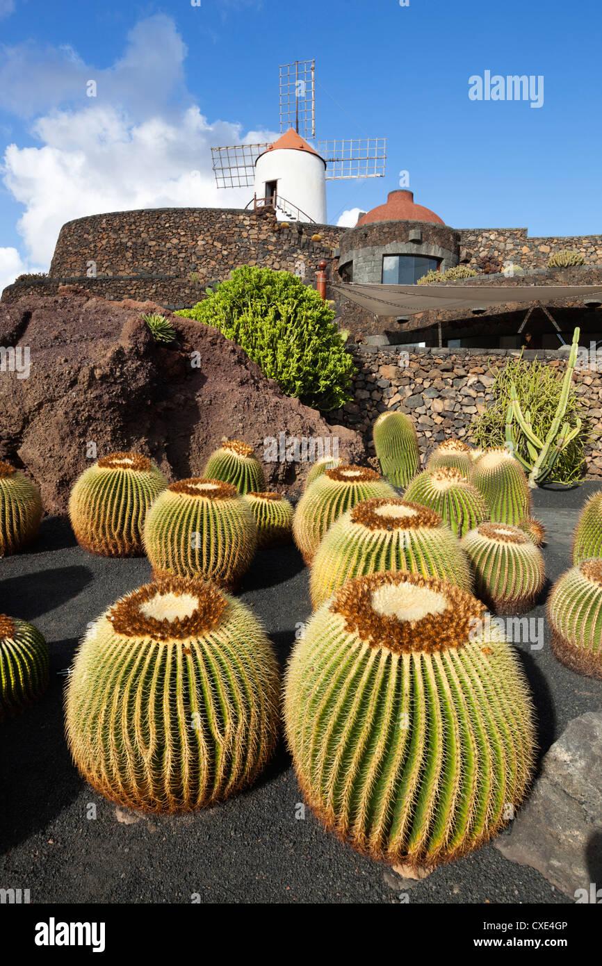 Jardin de Cactus (Kaktusgarten), Guatiza, Lanzarote, Kanarische Inseln, Spanien Stockbild