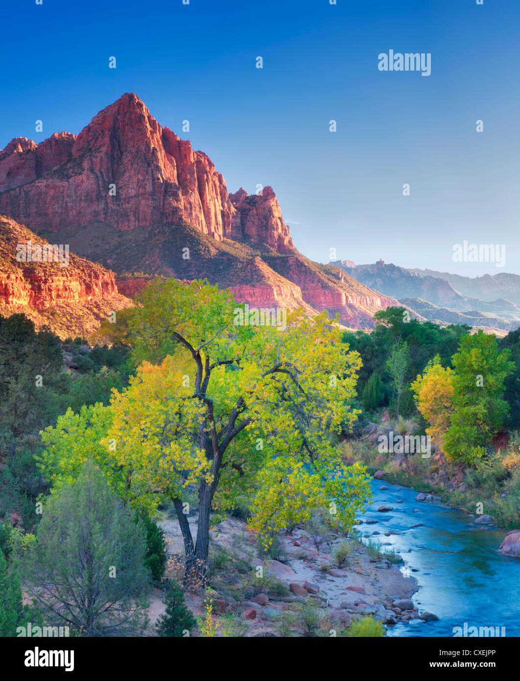 Herbstfarben und Virgin River. Zion Nationalpark, Utah. Himmel wurde hinzugefügt Stockbild
