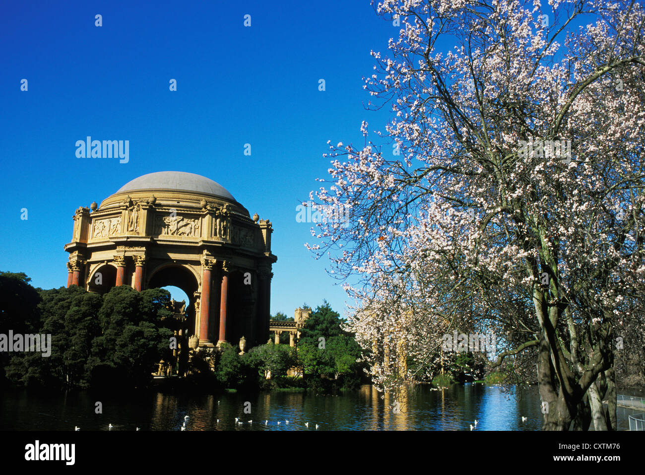 Palace of Fine Arts in San Francisco, Kalifornien. Stockbild