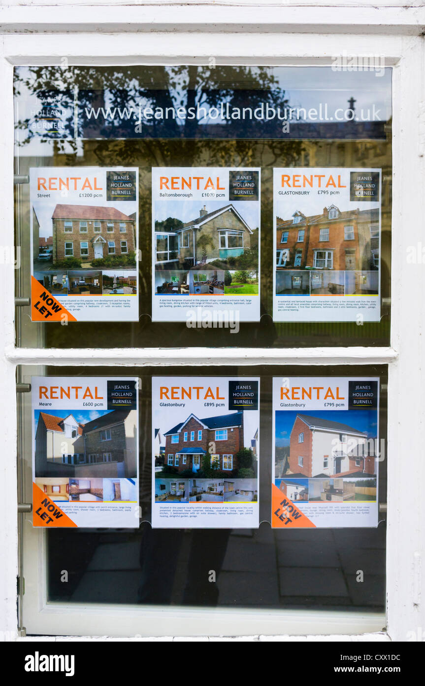 Immobilien zur Miete in einem Makler-Fenster, UK Stockbild