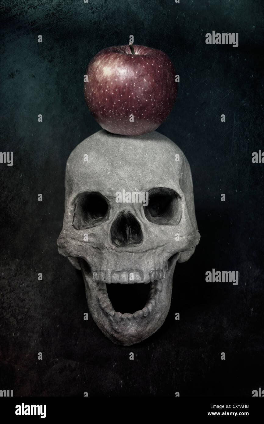 ein Schädel und einen Apfel Stockbild