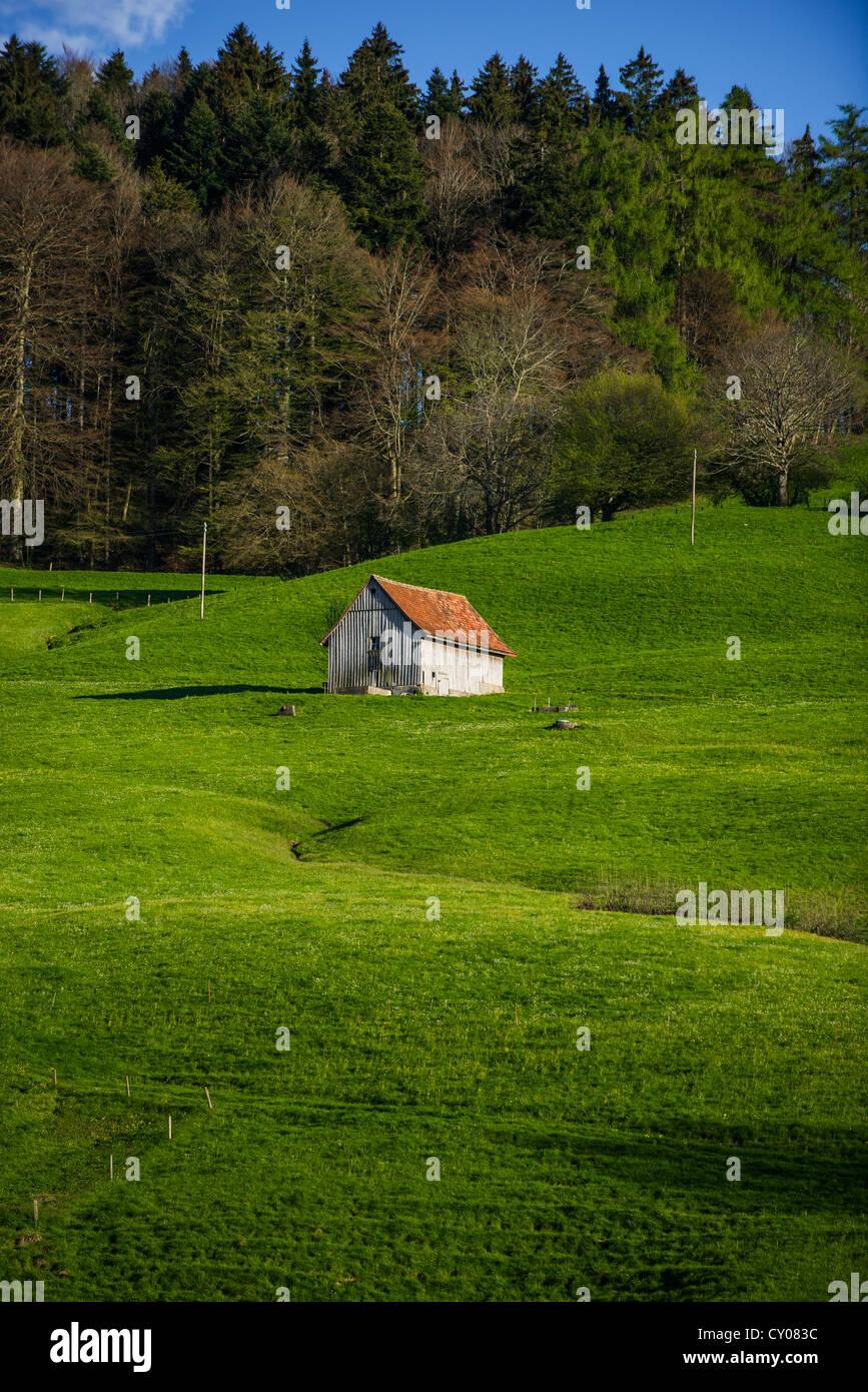 Hütte in einer üppigen Wiese bei Scheitlingsbuechel, St. Gallen, Schweiz, Europa Stockbild