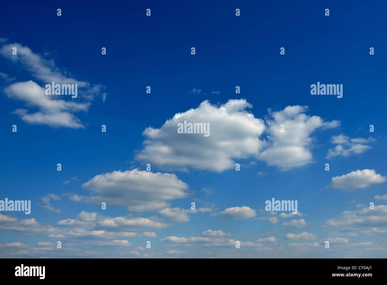 Blauer Himmel mit Cumulus-Wolken Stockbild