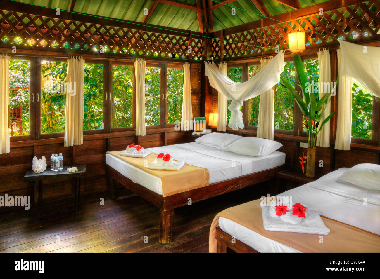 ATREE Haus Interieur im OUR JUNGLE HOUSE eine Lodge im Regenwald in ...