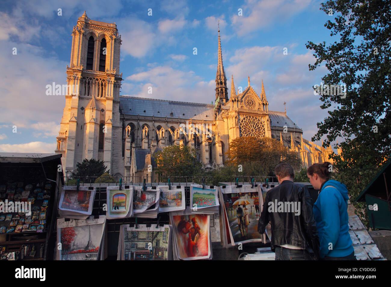 Notre Dame de Paris; La Cathédrale Notre-Dame de Paris Stockbild