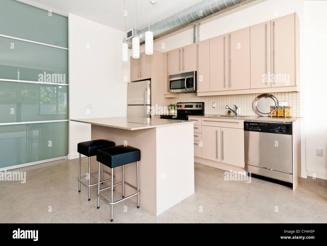 Küche im modernen Loft-Eigentumswohnung mit Insel und Edelstahl ...