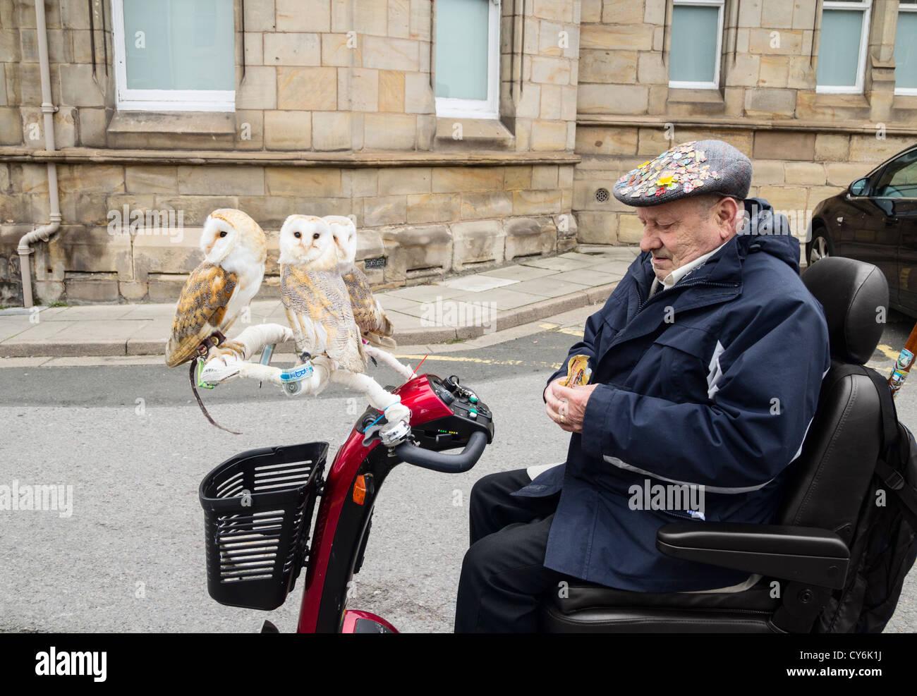 Rentner mit seinem Haustier Schleiereulen für einen Spin auf seiner Mobility Scooter. Großbritannien Stockbild
