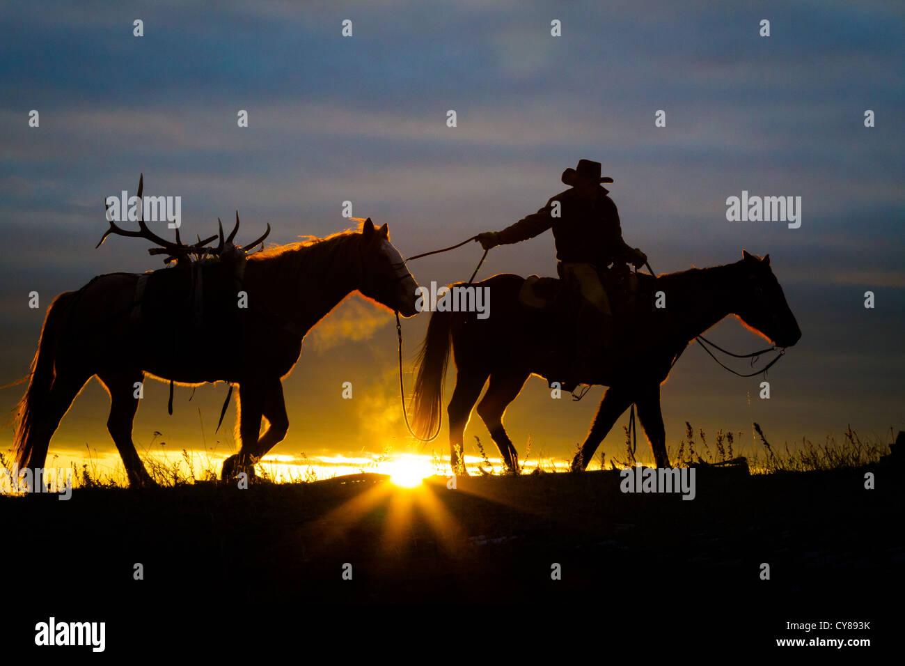 Cowboy und sein Pferd bei Sonnenaufgang auf einer Ranch in Wyoming northweastern Stockbild