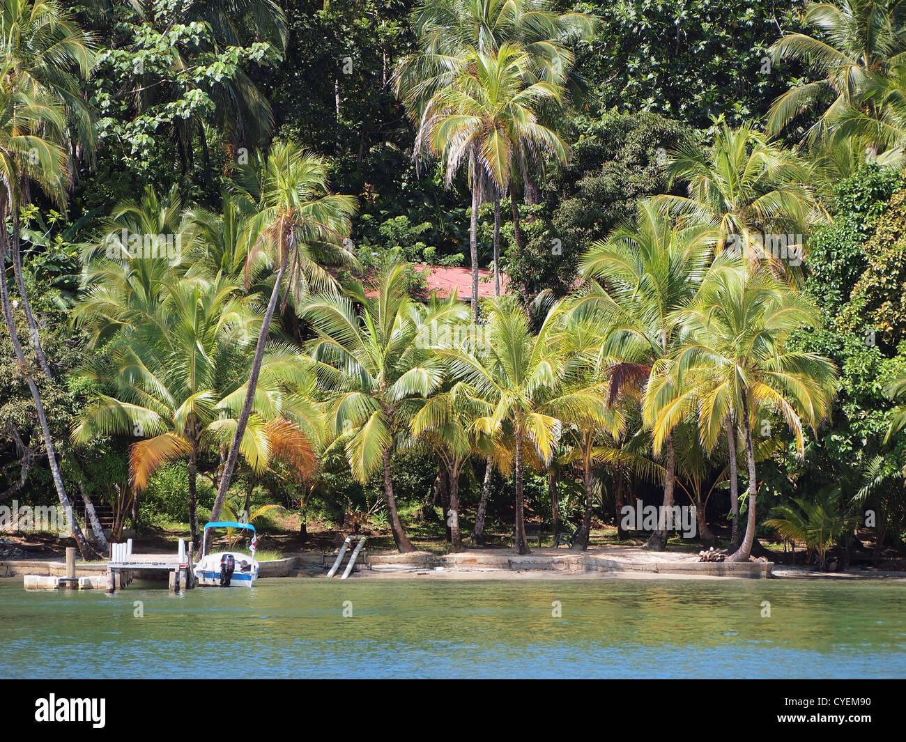 Privatstrand mit üppiger Vegetation auf einer Insel in der Karibik Stockbild