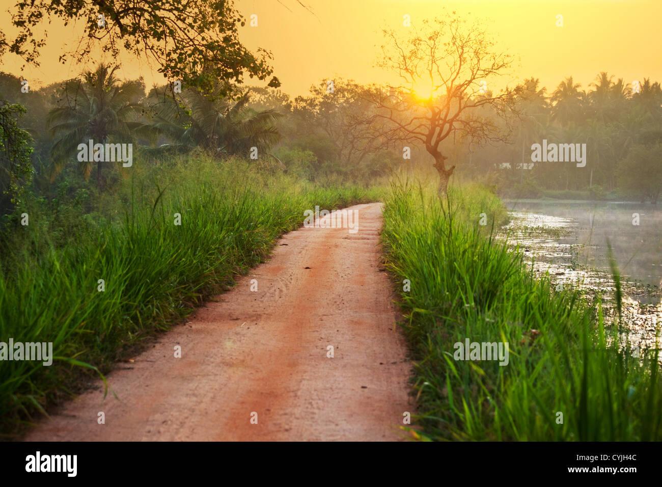 tropischem Fluss Stockbild